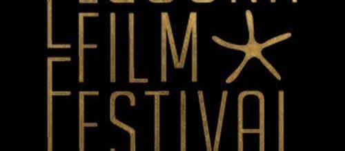 "First selection for ""Dans l'armoire"" : EL GOUNA FILM FESTIVAL!"